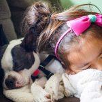 ¿Cómo lidian los niños con la pérdida cuando una mascota muere?