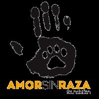 Logo Amor sin raza fundacion