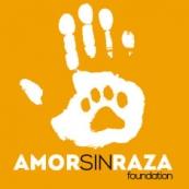 logo_amorsinraza